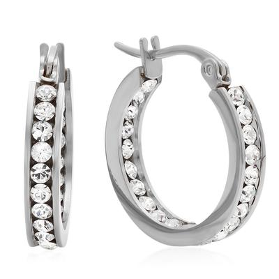 Small Stainless Steel & Cz Hoops